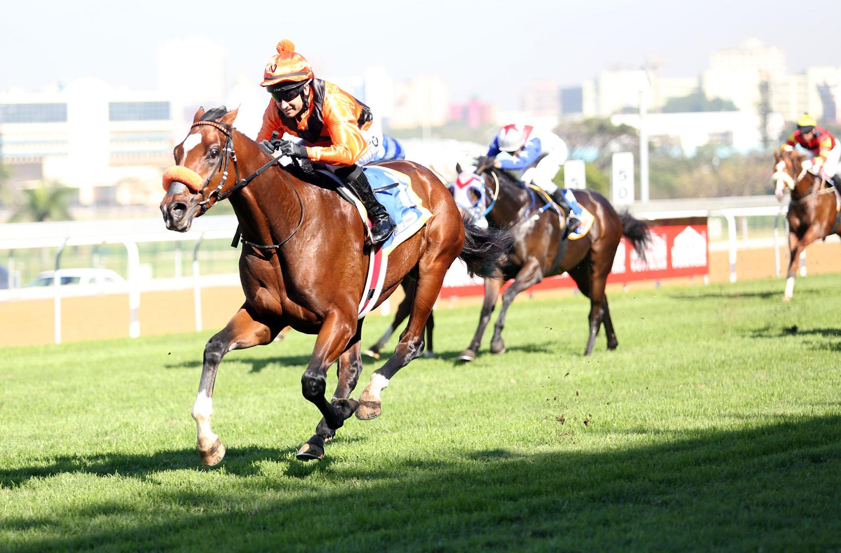 Turffontein horse race betting 101 football betting guide uk tv